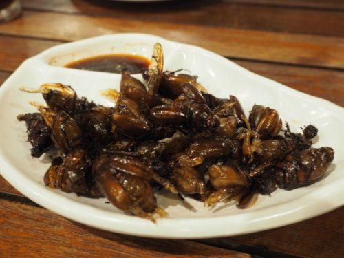 パルコの昆虫食レストラン